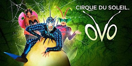 """""""Cirque du Soleil's OVO"""" tickets"""