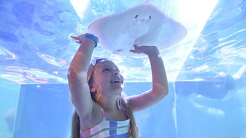 SeaQuest Aquarium Lynchburg