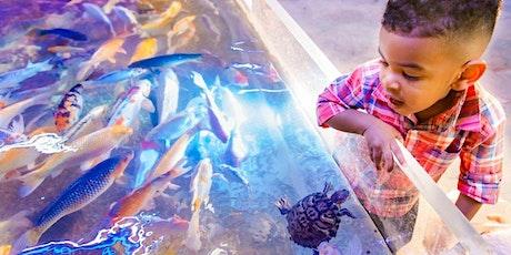 San Antonio Aquarium tickets