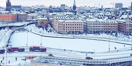 Stockholm Winter Boat Tour biljetter