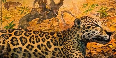 National Museum of Natural History Sofia: Guided Tour tickets