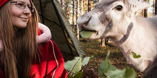 Elf's Farm Yard Petting Zoo