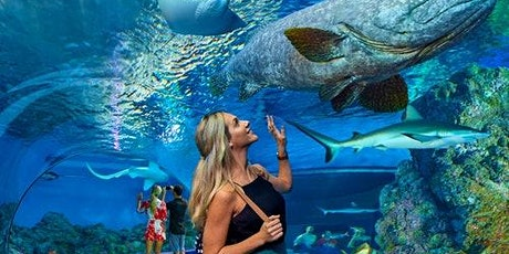 Cairns Aquarium tickets