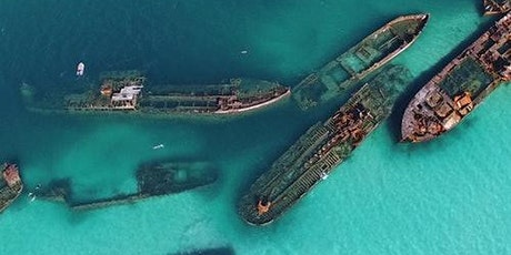 Tangalooma Wrecks & Dolphin Cruise from Brisbane tickets