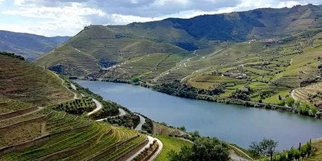 Douro Valley: Day Tour from Porto bilhetes