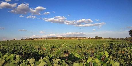 Cata Armonizada de Vinos de Bodega Torre de Barreda entradas
