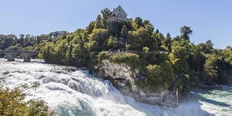Rhine Falls & Stein am Rhein: Transport from Zurich billets