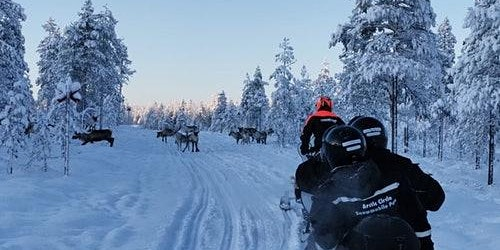 Snowmobile Safari 1 Hour