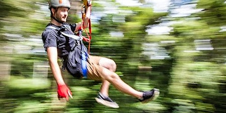 TreeTop Challenge at The Big Pineapple in Sunshine Coast tickets