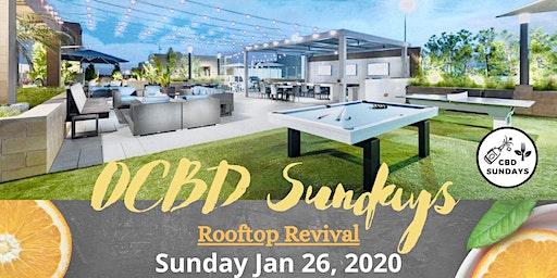 CBD Sundays Rooftop Sunday Funday!