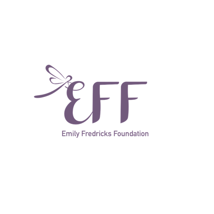 Emily Fredricks Foundation Bunco Night image