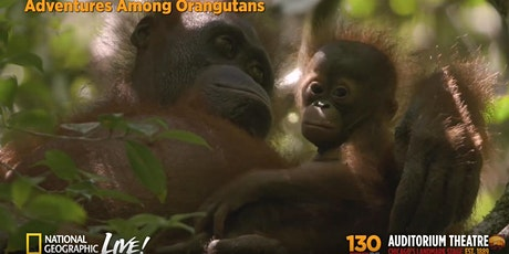 """Nat Geo Live"" Speaker Series — ""Adventures Among Orangutans"" tickets"