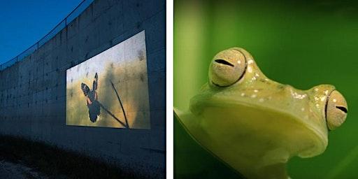 Ay Mariposa + Biomimicry (March 14 @Triton College)
