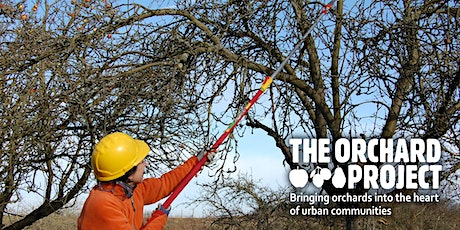 Pruning for older, neglected and imperfect fruit trees - West Yorkshire tickets