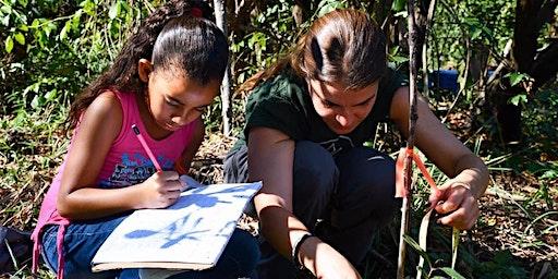 Monitoreo de Siembra en la Reserva Natural Ciénaga las Cucharillas
