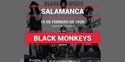 Concierto Black Monkeys en Pause&Play Vialia Salamanca