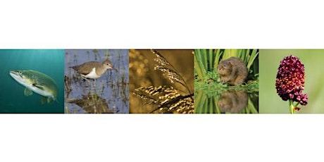 CaBA Biodiversity tickets