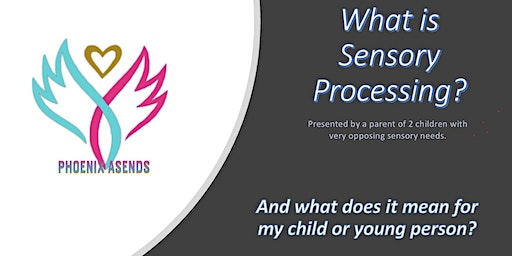 Sensory Processing Awareness Session. (All day/ in depth).