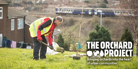 Formative Fruit Tree Pruning & New Orchard Care - West Yorkshire tickets