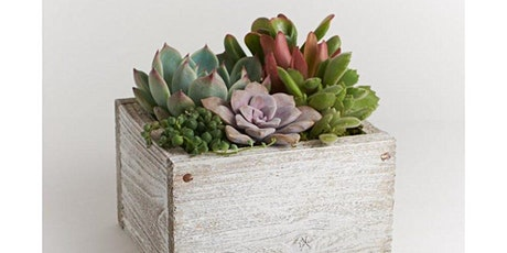 Burgers, Brews, and Spring Time Succulents - A Floral Arranging Class tickets