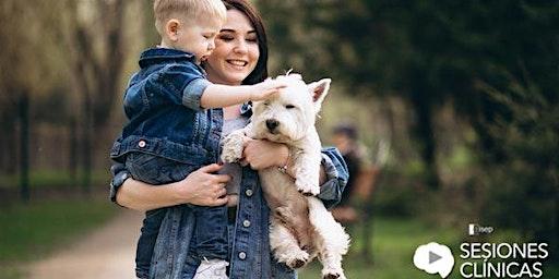 Vínculo perro - humano, herramienta de intervención en psicología moderna