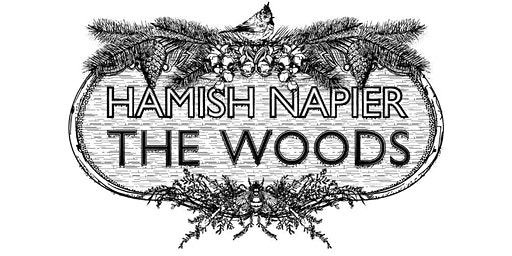 Hamish Napier Trio - The Woods