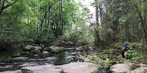 Flint River Headwaters Cleanup