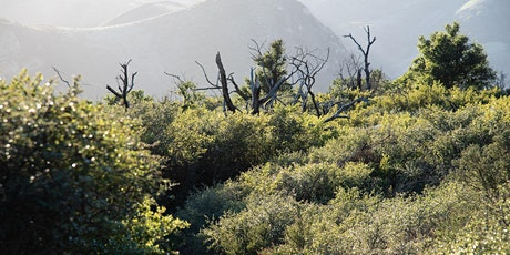 FireHike: Gaviota Peak Area tickets