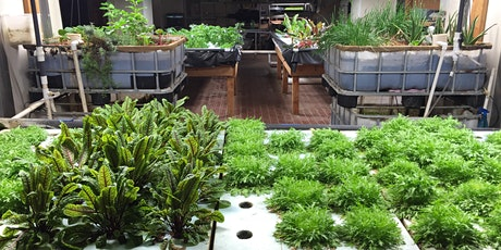 Introduction to Aquaponics (Virtual Session) tickets