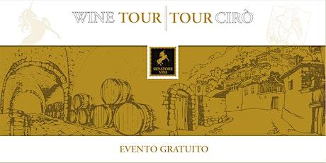 Wine Tour   Tour Cirò biglietti