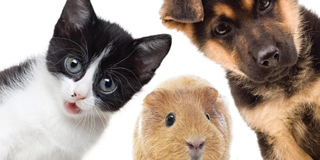 AACC Vet Assisting Information Session tickets