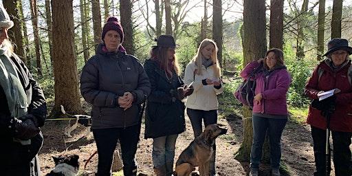 Netwalking - a joyful networking opportunity in beautiful natural venue