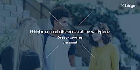 BRIDGE: Bridging cultures differences at the workplace tickets
