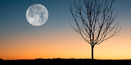 Full Moon Sacred Circle - Journey Through Scent and Sound - with Artis tickets
