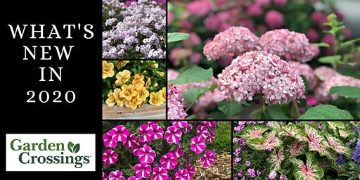Gardening Seminar - What's New for 2020