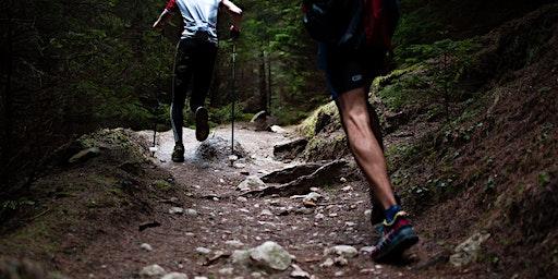 Best Hikes: Nimitz Way to Rotary Peace Grove [Berkeley]