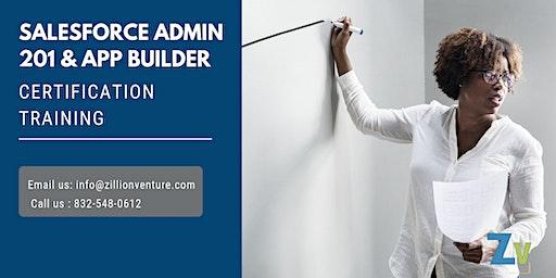Salesforce Admin 201 and App Builder Certification Training in Bathurst, NB