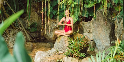 Sacred Medicine Council - Self Healing Journey