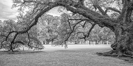 Creating Great Monochrome Images tickets
