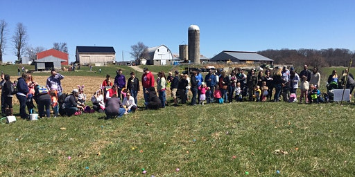 Egg Hunt on the Farm, age group 8-12; 2:00 hunt time