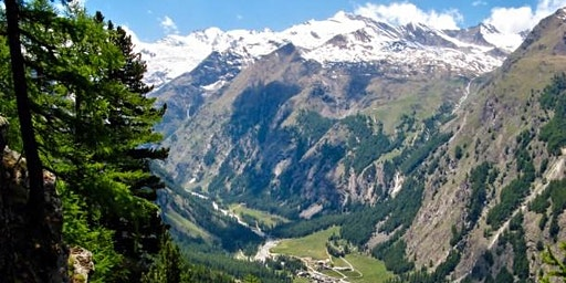 Wine Tasting: Val d'Aosta!