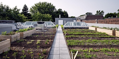 Growing Food in the City: 4-Part Workshop Series tickets