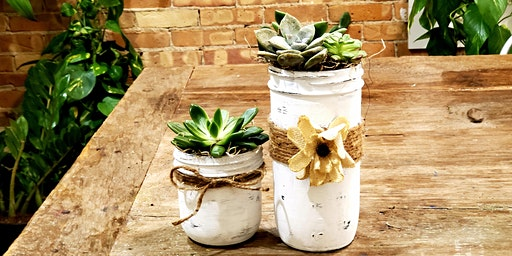 Sips and Succulents, Mason Jar Collection