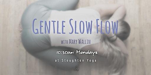Gentle Slow Flow Yoga