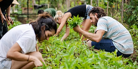 Permaculture Skills Retreat tickets