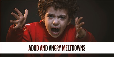 ADHD, SPD, Anxiety, Angry Meltdowns: Addressing the Cause tickets