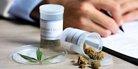 2020 : An 1 du cannabis thérapeutique en France billets
