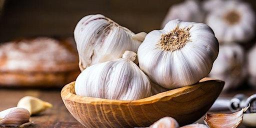 Garlic Festival 2020