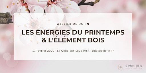 Atelier de Do-In - Les Énergie du Printemps et de l'Élément Bois