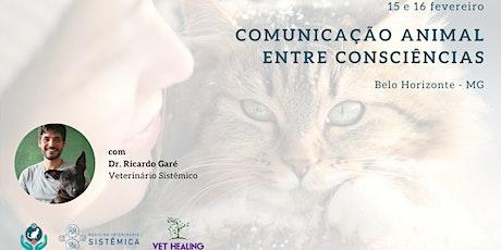 Cópia de Curso Inicial Comunicação Animal (15 e 16 de fevereiro - Belo Horizonte) ingressos